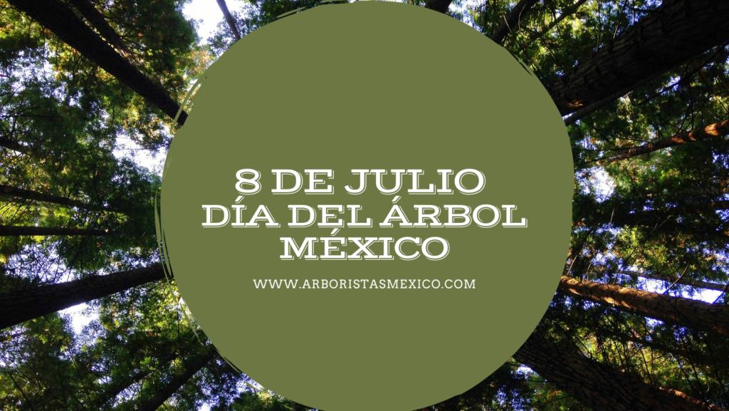 Día del Árbol México 2021