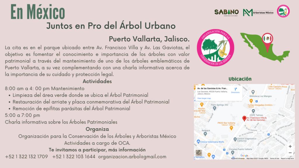 día del Árbol Puerto Vallarta, Jalisco