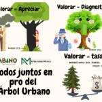 Valorar el Árbol
