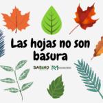 Las hojas no son basura